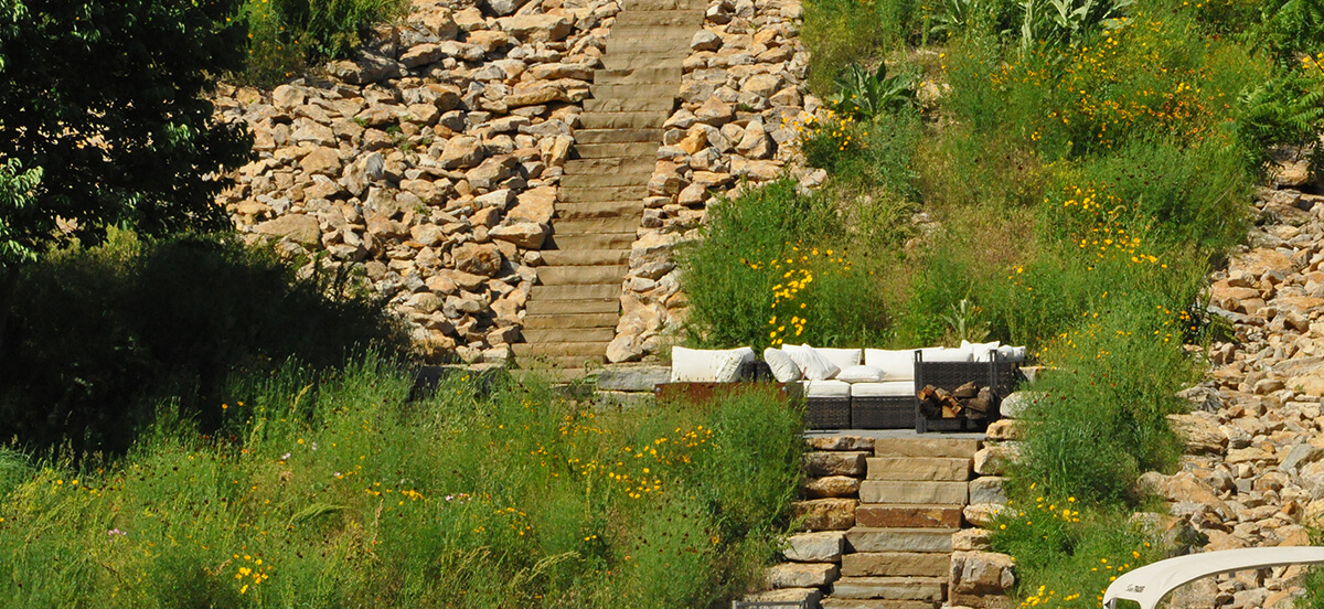 Yellow flowers and stone steps in residential landscape design.