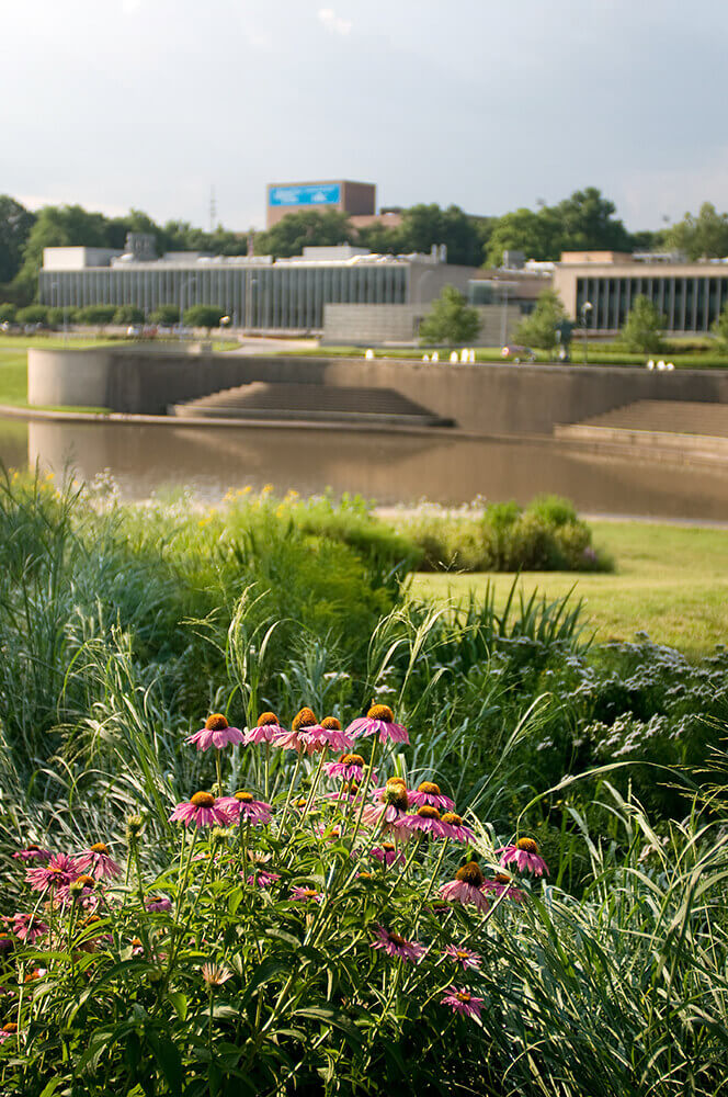 Commercial landscape design at the Art Institute completed by Embassy Landscape Group.