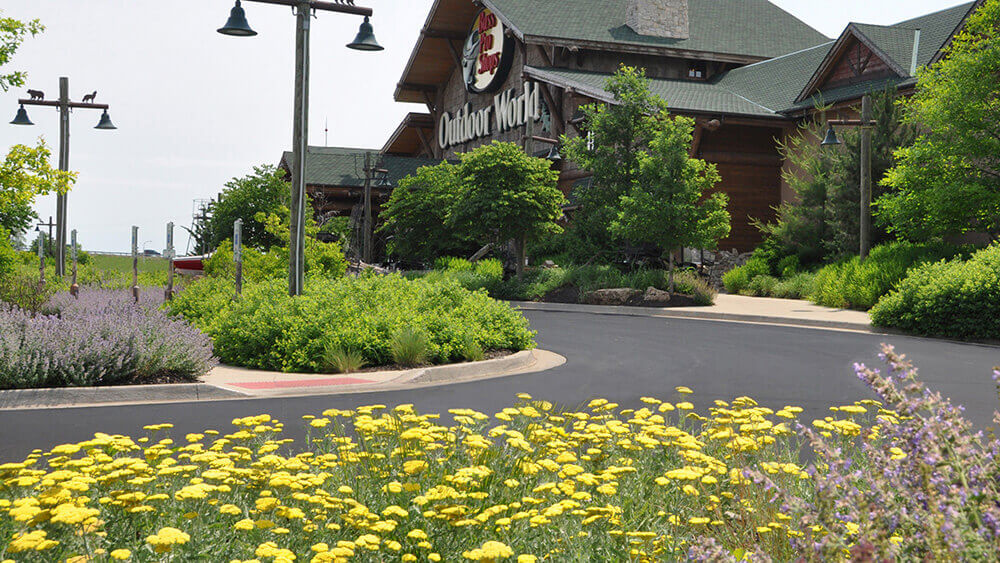 Commercial landscape design at Bass Pro Shop completed by Embassy Landscape Group.