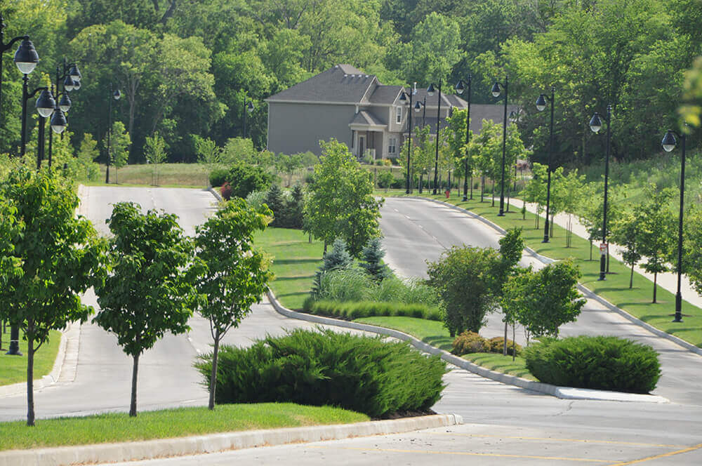 Commercial landscape design in road median, completed by Embassy Landscape Group..