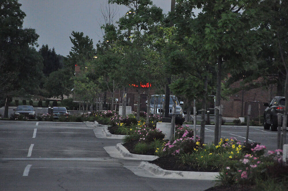 Commercial landscape design in parking lot, completed by Embassy Landscape Group..