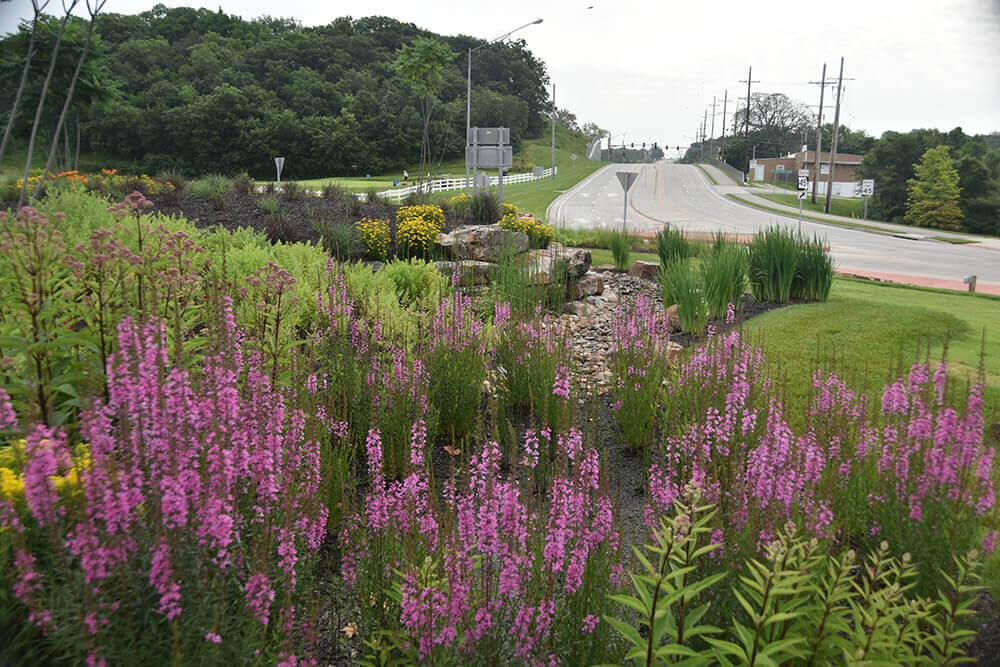 Commercial landscape design along road, completed by Embassy Landscape Group..