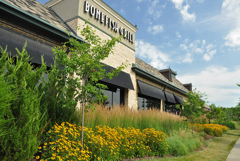 Landscape design at Bonefish Grill completed by Embassy Landscape Group.