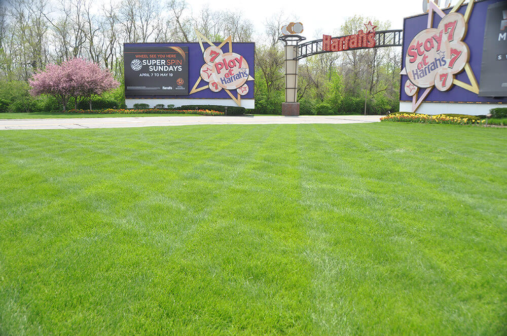Landscape design at Harrah's in Kansas City, completed by Embassy Landscape Group.