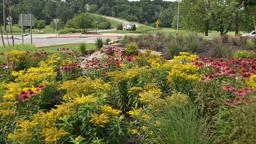 Commercial landscape near a roundabout, completed by Embassy Landscape Group..