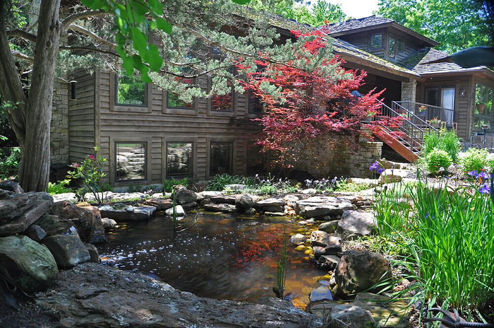 Backyard pond area surrounded by rocks and red tree.
