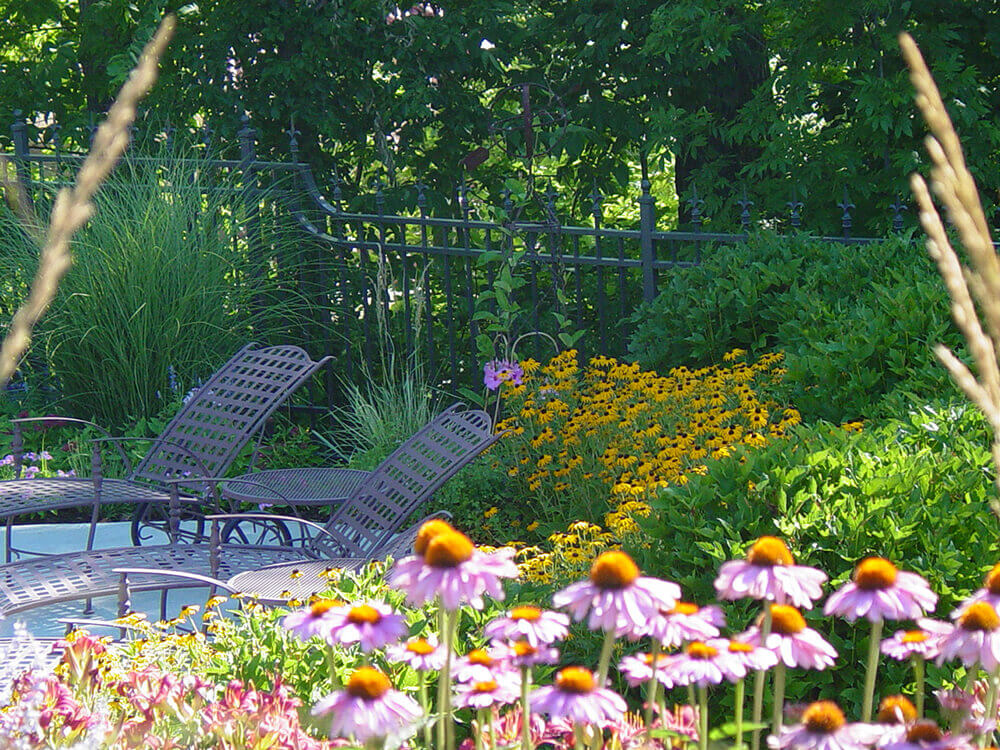 Residential landscape design with bright daisies and chairs.