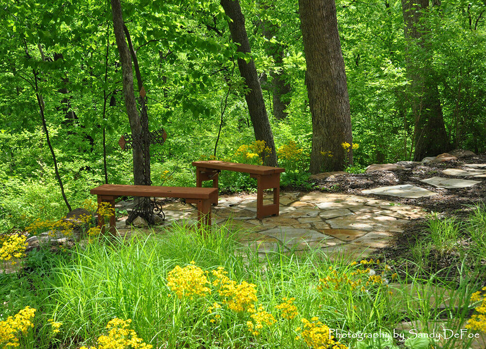 Backyard area with greenery and yellow flowers.