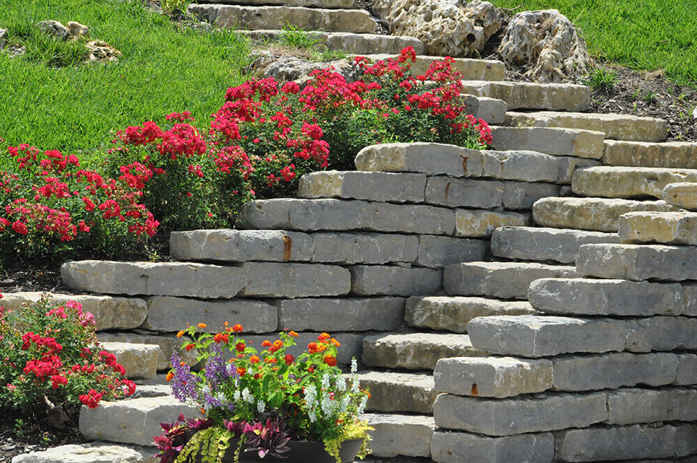 stone steps surrounded by red flowers