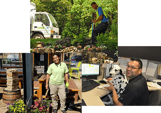 Careers at Embassy Landscape Group