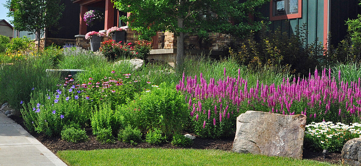 Landscape design with bright flowers.