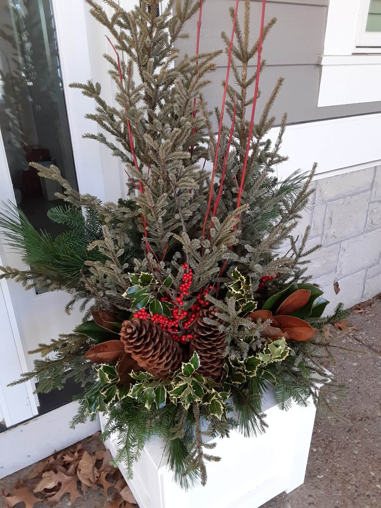 planter with holly